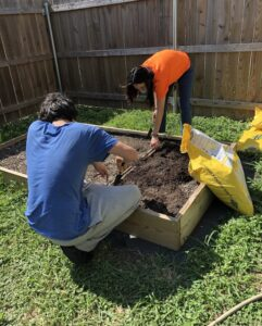 Image of teen boy and girl digging in small garden.